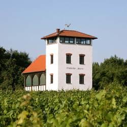 Wein und Sektvergnügen Stadecker Warte